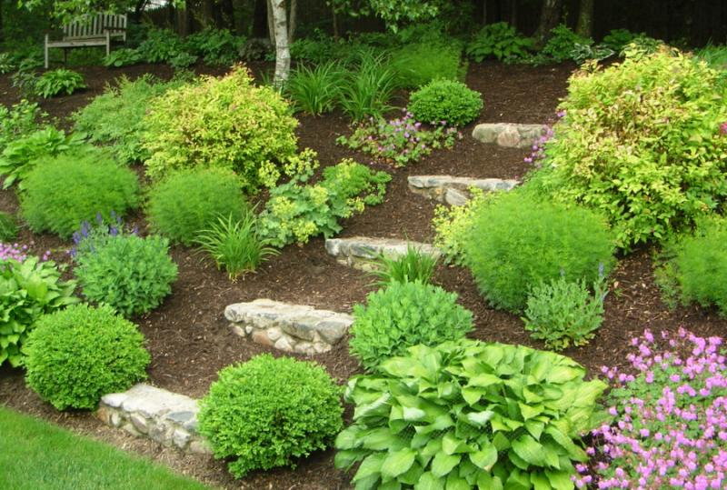 Mound Landscaping Ideas